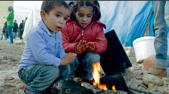 Kobane_Zar